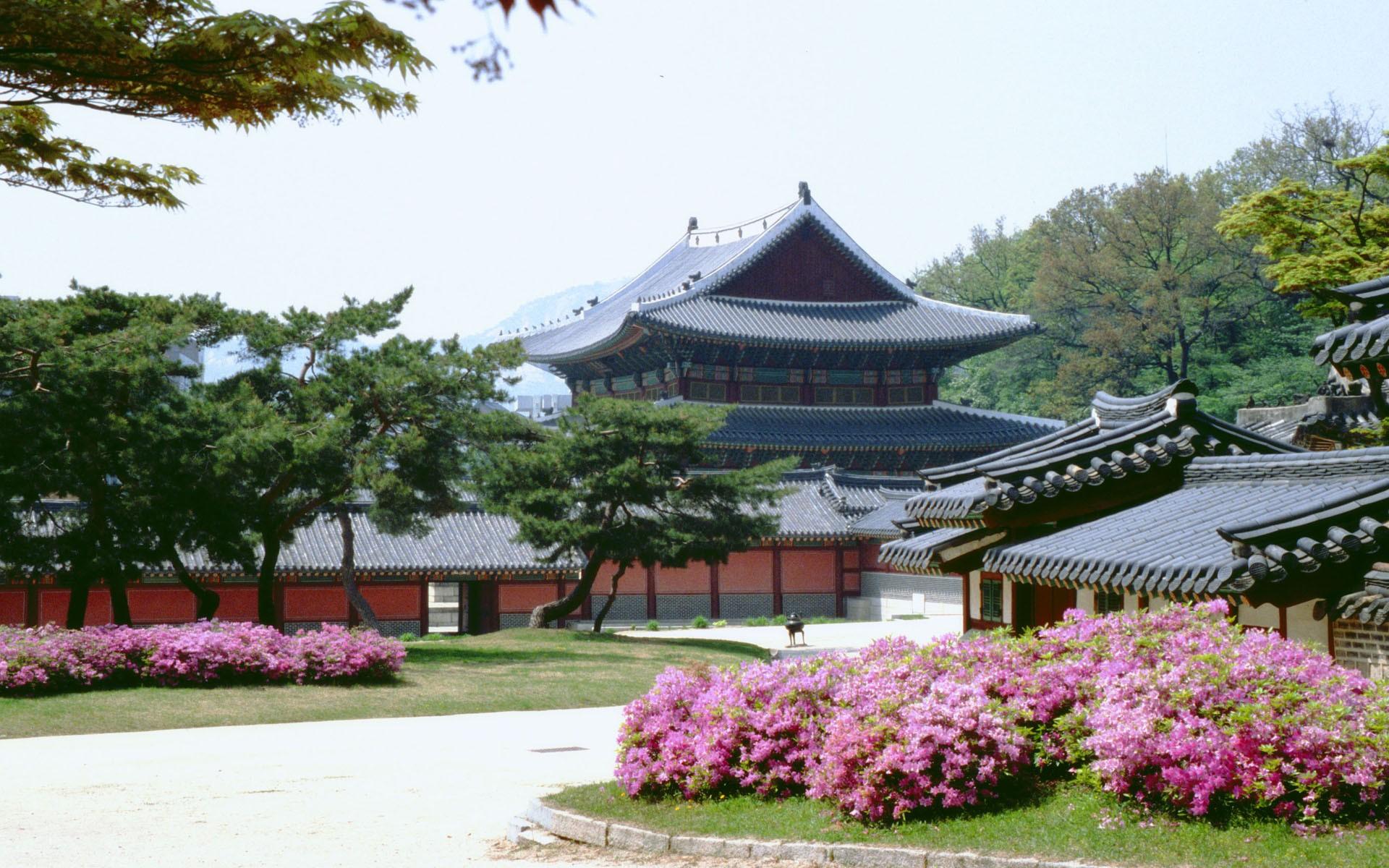 Корейские похороны